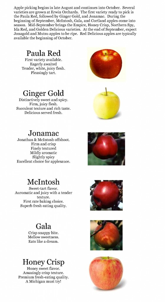 Apples page 1